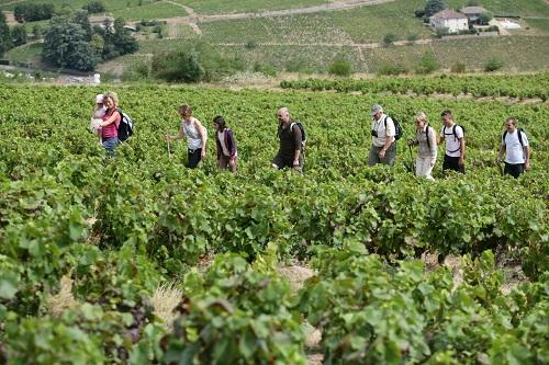 mise en scne tourisme Destination Beaujolais